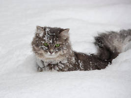 Masyanya in a snow captivity by Daykiney