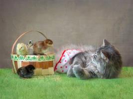 Masyanya playing with little chicks by Daykiney