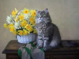 Masyanya and basket of daffodils by Daykiney