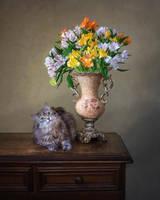 Masyanya and bouquet of alstroemeria by Daykiney