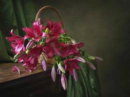 With  magenta lilies by Daykiney