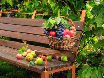 Summer still life at the cottage by Daykiney