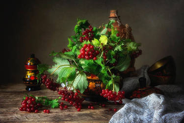 Red berries of viburnum by Daykiney
