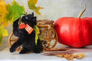 Little black kitten and autumn by Daykiney