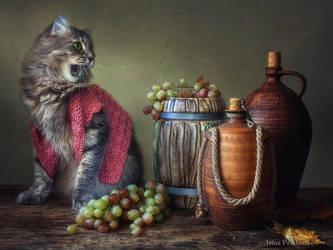 - I do not drink wine! by Daykiney