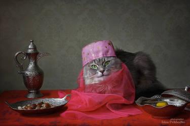 Eastern princess by Daykiney