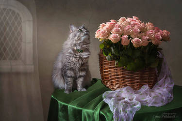 Masyanya and a basket with pink roses by Daykiney