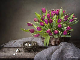 Spring with a basket of magenta tulips by Daykiney