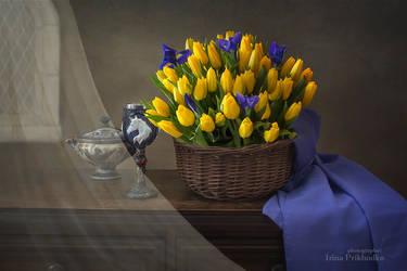 Spring wind by Daykiney