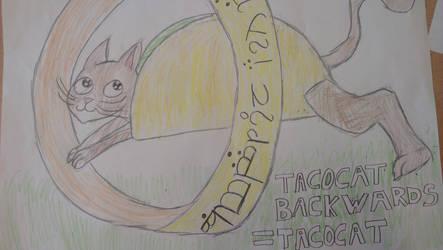 Tacocat backwards is Tacocat by 9joakim7