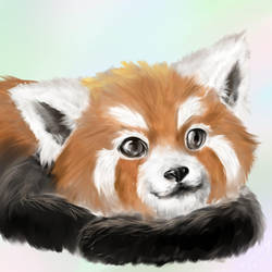 Red panda - speedpaint by ViTong4
