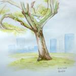 Weeklies #3-40 Rain Tree by Aurelie-Charmeau