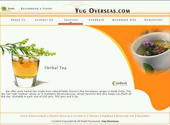 web interface, yug Overseas by vinkrins
