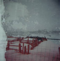 Double Exposure 4 by xspyfishx