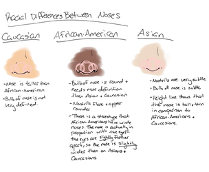 Racial Differences - Noses by ValerieShort