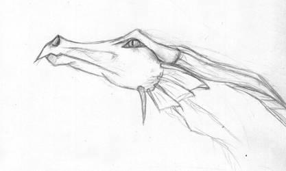 Dragon Head by Naddar