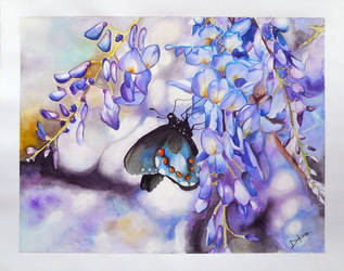 Glorious Nature by Diksharpner