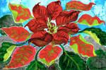 Poinsettia by ghostyheart