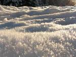 Landscape of frost by Castlemoor-stock