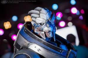 Mass Effect: Garrus Vakarian cosplay by HoldW