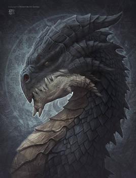 Shadow Dragon by kerembeyit