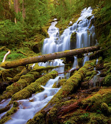 Upper Proxy Falls by coulombic
