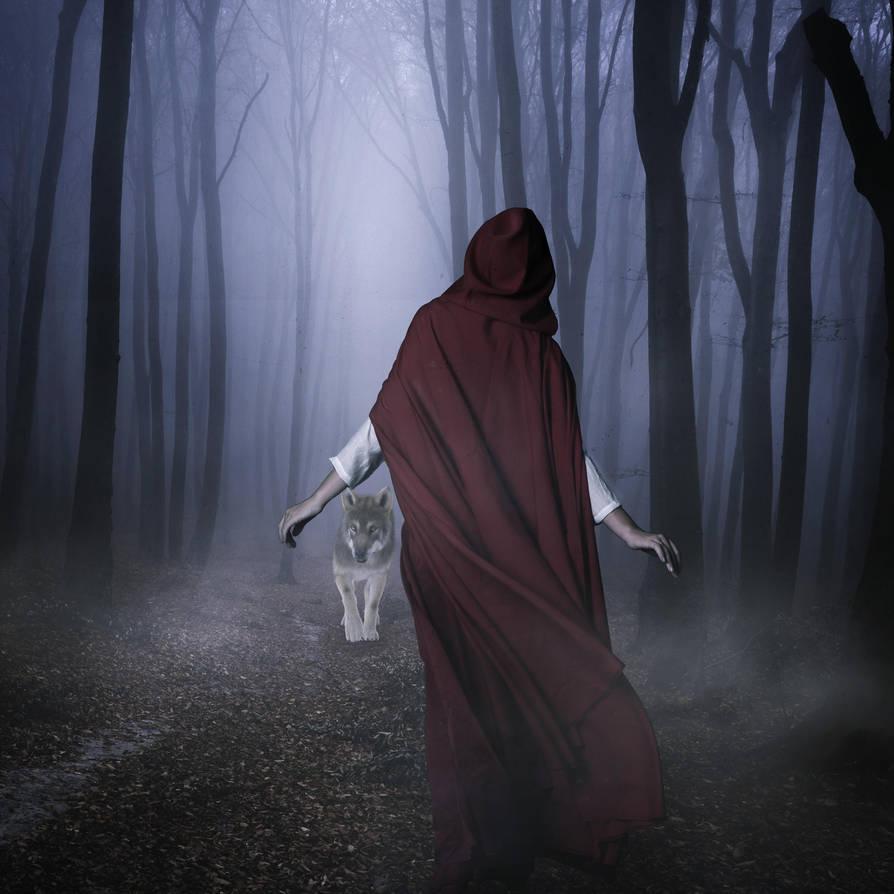 Into The Woods by darkcherrydesign