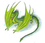 Green dragon by Panartias