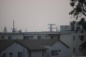 Northridge Sunset by Sageous