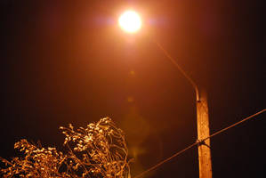Street Lamp 04 by Sageous