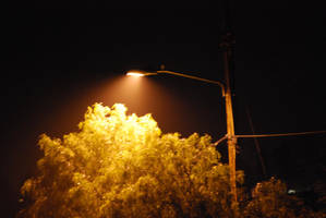 Street Lamp 07 by Sageous