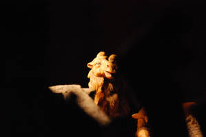 Camel Dazed by Sageous