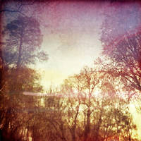 Memory Of The Lake by KizukiTamura
