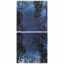 surface and reflection by KizukiTamura
