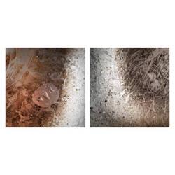 roots and dust by KizukiTamura