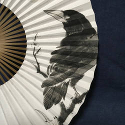 Oriental Japanese Hand Fan, Searching for Light by catherinejao
