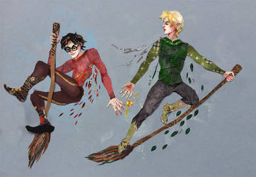 Harry and Draco flying by sassynails