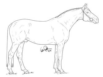 Hanoverian stallion by elipiart