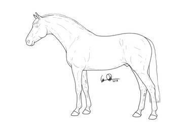 Mecklenburg stallion by elipiart