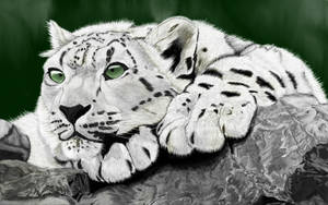 Snow leopard by Brownie-frito