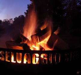 the flame by bleedlikemebabe
