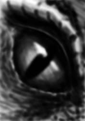 Eye by theSeriousPain