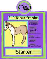 SLP Tobar Smoke by DiamondHorses