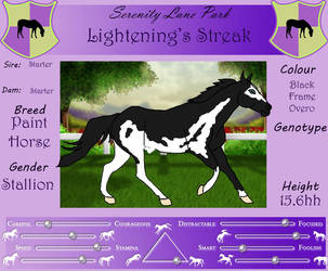 SLP Lightening's Streak by DiamondHorses