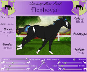 SLP Flashover by DiamondHorses