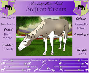SLP Saffron Dream by DiamondHorses