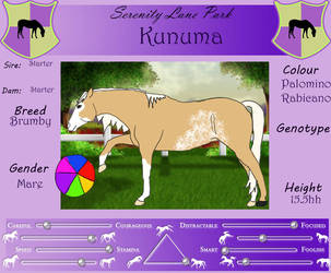 SLP Kunuma by DiamondHorses