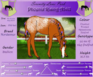 A3411 SLP Phoenix Rising by DiamondHorses