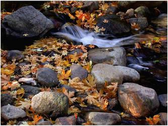 OREGON WATERFALL by THOM-B-FOTO