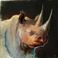 AE_BT_Rhino_03 by barontieri